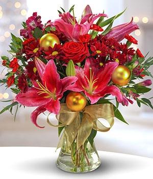 Traditional Christmas Flowers Of Rustington